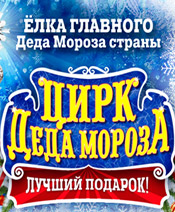 Цирк Деда Мороза 4