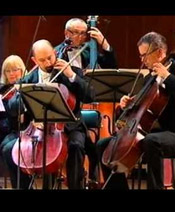 Венский оркестр Кальмана